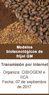 Modelos biotecnológicos de frijol GM