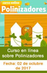 Curso en línea sobre Polinizadores