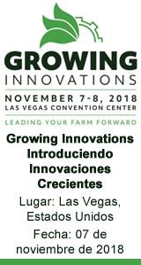 Growing Innovations - Introduciendo Innovaciones Crecientes