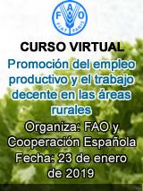 Curso: Promoción del empleo productivo y el trabajo decente en las áreas rurales