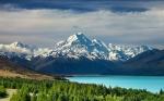 Nueva Zelanda plantará 100 millones de árboles cada año para combatir el cambio climático