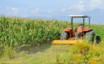 Incrementará México 27,8% producción agrícola gracias a planeación estratégica de SAGARPA