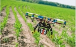 Drones y negocios: crece la demanda, pero la regulación los ata a tierra