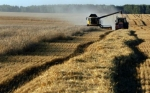 Rusia reina en el mayor mercado de trigo del mundo