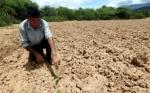 En Bolivia 51 municipios no tienen agua