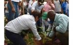 Colombia lanza convenio para productos libres de deforestación