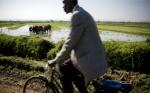 8 acciones frente al cambio climático por un mundo con #HambreCero
