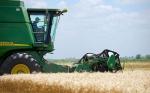 Salvo el trigo y la carne, el agro en Argentina perdió peso en las exportaciones