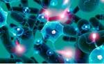 Un estudio vincula la ingesta de bacterias con mejoras en la impulsividad