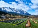 Expertos internacionales compartirán avances claves en materia de agricultura sostenible y seguridad alimentaria frente al cambio climático