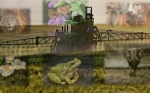 Como la optimización mundial de la agricultura podría evitar las extinciones masivas