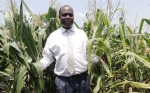 Los científicos deben comunicarse con valentía, insta periodista ugandesa cuando ve cultivos GM por primera vez