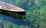 Día Mundial del Agua 2018: soluciones de agua basadas en la naturaleza