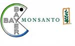 Nace el gigante mundial de fitosanitarios: Luz verde, con condiciones, para la compra de Monsanto por Bayer