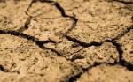 La sequía en Uruguay y Argentina es el desastre climático más caro en lo que va del año en el mundo