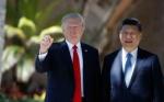 Cómo impacta en Argentina el bloqueo de China a la soya de EE.UU.