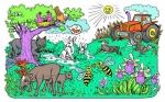 Cinco plantas y animales confundidos por el cambio climático