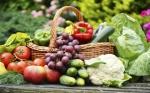 Un nuevo estudio desafía las creencias sobre la agricultura orgánica