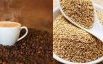 China verificará calidad de café y quinua bolivianos para su compra