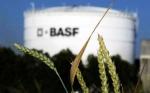 Basf le compró a Bayer la unidad de semillas de hortalizas por 1.700 millones de euros