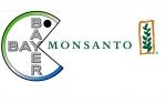El nombre de Monsanto se desvanece: la adquisición de Bayer conduce a cambios en el pararrayos ambiental