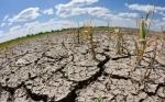 Fenómeno de El Niño generaría sequías en el Pacífico y lluvias en el Caribe