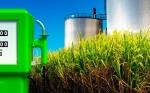 Bolivia opta por su propio bioetanol para mejorar la calidad del combustible