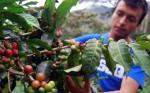 Argentina y FAO organizan Foro de Agricultura y Alimentación en Latinoamérica