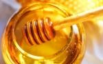 Chile: Veterinarios alertan sobre los cuidados que se deben tener en la producción de miel y posibles daños a la salud humana si no hay control