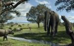 El clima y la competencia entre especies limitaron la biodiversidad de mamíferos en la Península Ibérica