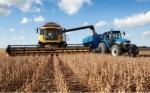 Argentina y OGM: Explorando la larga relación de la nación con los cultivos biotecnológicos