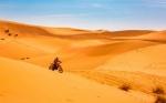 Desierto del Sahara, 10 % más grande por el cambio climático
