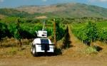 Un robot terrestre monitoriza parámetros clave en viñedos