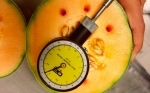 FDA inicia capacitaciones para exportar hacia EE.UU.