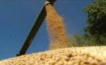 En guerra comercial con EE.UU., China empuja las ventas de la soja argentina
