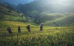 El sector alimentario confía en la tecnología para producir más con menos