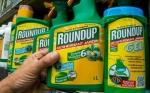 Juez puede anular la decisión del jurado en el caso de Monsanto Roundup