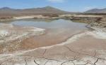 Las primeras lluvias en siglos en el corazón del desierto de Atacama devastan su vida microbiana