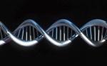 Invertir en ciencias de la vida o cómo el genoma y las células se hacen hueco en los mercados