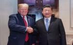 China volvería a comprar soya de Estados Unidos: el comunicado oficial