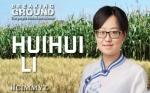 Investigadora del CIMMYT, Huihui Li, vincula el nuevo conocimiento genético con el mejoramiento de cultivos