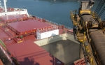 Brasil sucede a EE.UU. como principal proveedor de soja a China