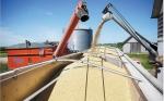 La Argentina, el tercer exportador mundial de maíz