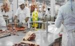 Brasil espera que visita de Bolsonaro a EE.UU. sirva para lograr reapertura de exportaciones de carne