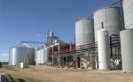 Argentina: Publicaron los nuevos precios de bioetanol a base de maíz y de caña de azúcar
