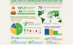 Un total de 70 países adoptaron cultivos biotecnológicos a través de la siembra y la importación el 2018