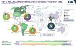 Un estudio revela que los OGM contribuyen a la sostenibilidad de la agricultura brasileña