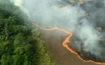 ¿Podría la bioeconomía circular ayudar a salvar el Amazonas?