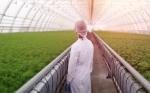 Para alimentar al mundo en 2050, necesitamos construir las plantas que la evolución no hizo