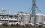 Argentina: Un proyecto de ley clave para el desarrollo de los biocombustibles